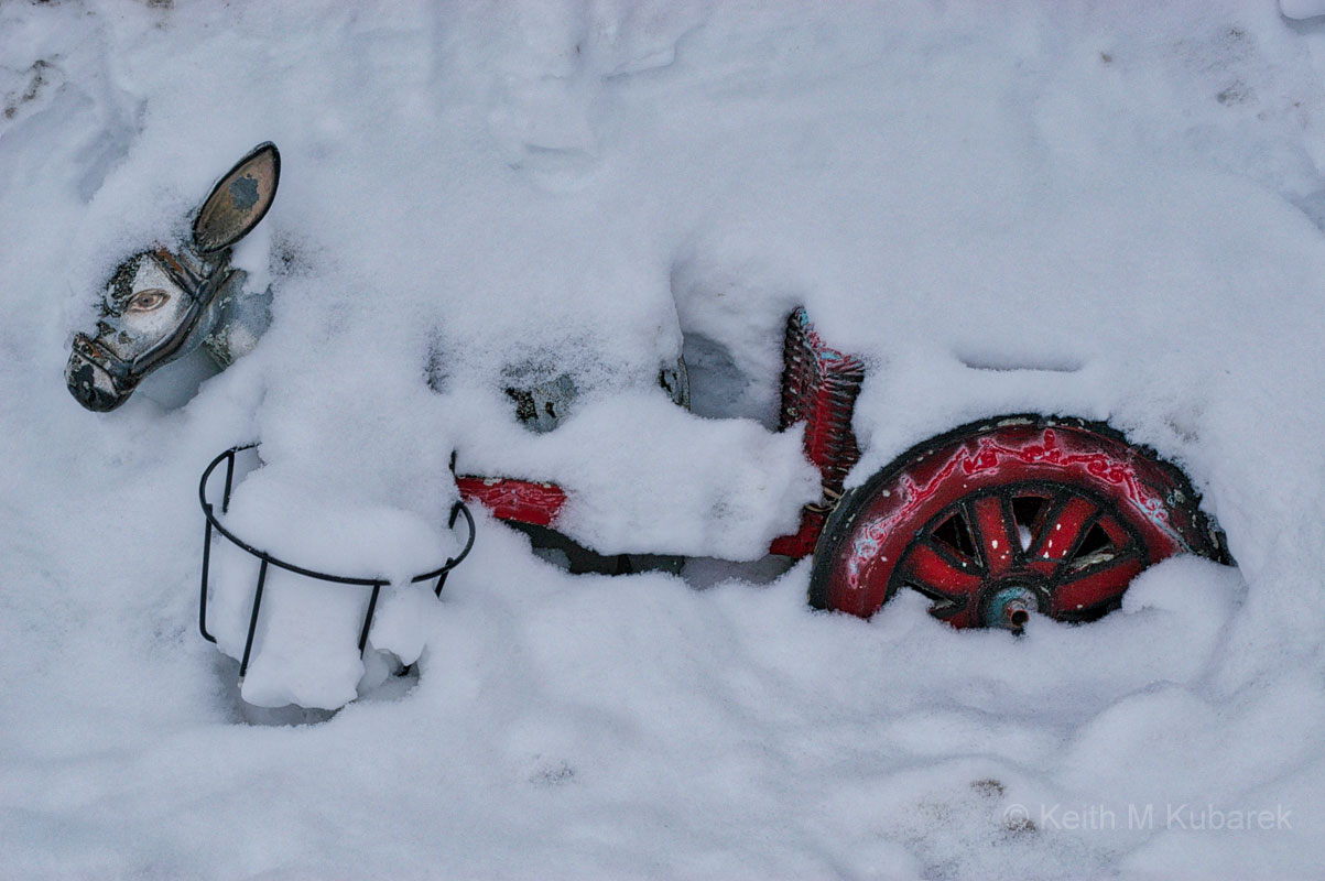 Toy Horse and Cart Buried in Snow