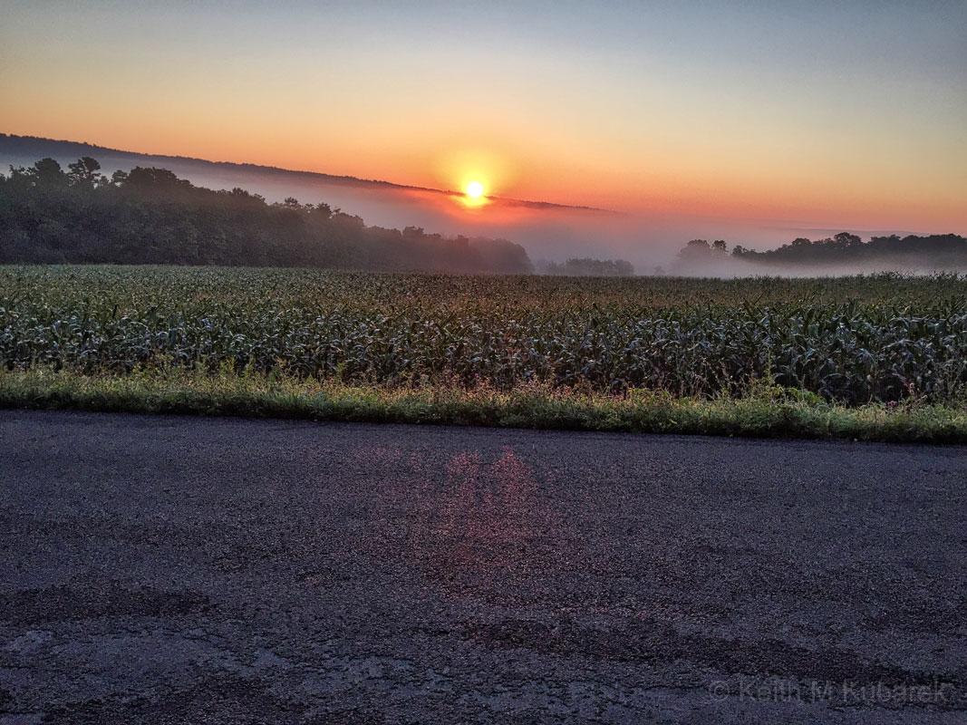 Enfield Sunrise